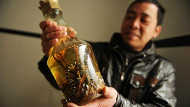 Un fabricante de vino de serpiente sostiene una botella en Zisiqiao, China