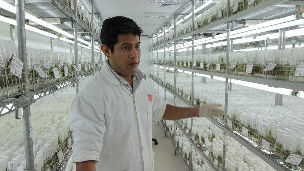 Laboratorio en Perú