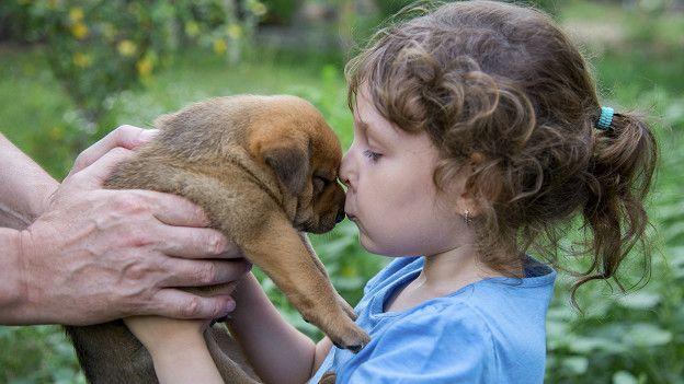 Девочке подарили щенка