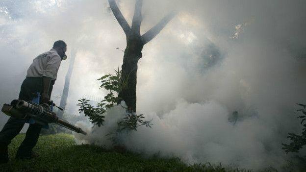 Seria possível erradicar mosquitos em todo o mundo?
