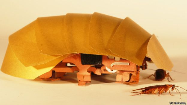 Cucaracha robot