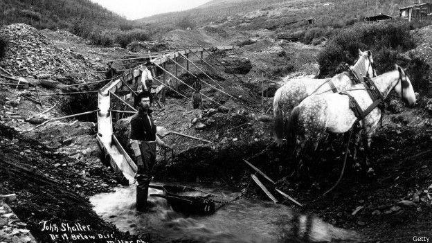 探礦者在克朗代克地區淘金