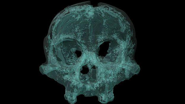 http://ichef.bbci.co.uk/news/ws/624/amz/worldservice/live/assets/images/2016/03/01/160301093647_hobbit_creature_skull_624x351_antoinebalzeau_nocredit.jpg