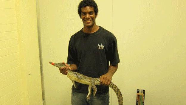 Nicolas Nagloo y sus colegas estudiaron los cocodrilos de una granja en Broome, Australia.