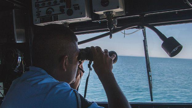 Operativo para la conservación de la vaquita marina