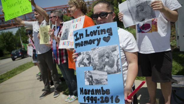 Muchos se manifestaron en la puete del zoológico por la muerte de Harambe.