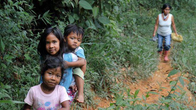 Niños (frente) acompañan a la mayora Irene al cafetal.