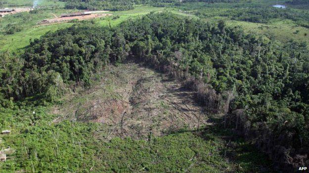 Area deforestada en la Amazonía