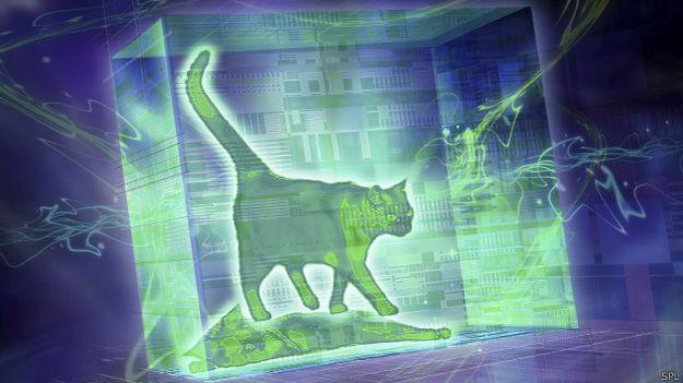 Gato cuántico