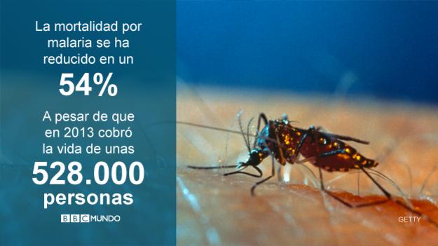 Malaria, en cifras