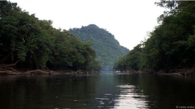 Река Бурак на Борнео