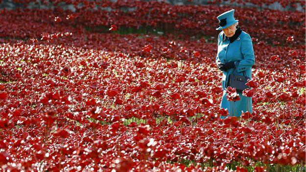Королева посещает маковое поле в Лондонском Тауэре