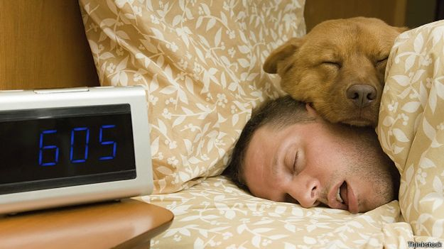 http://ichef.bbci.co.uk/news/ws/625/amz/worldservice/live/assets/images/2015/01/20/150120145221_sleep_man_and_dog_in_bed_624x351_thinkstock.jpg