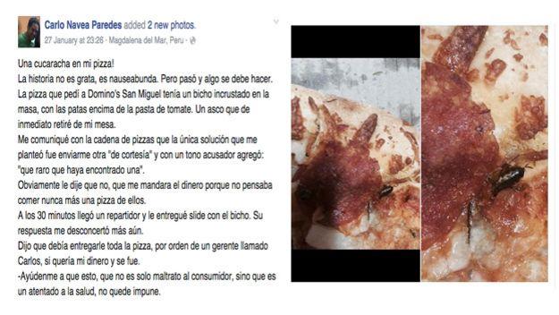 Foto de pizza contaminada | Foto: Carlos Navea