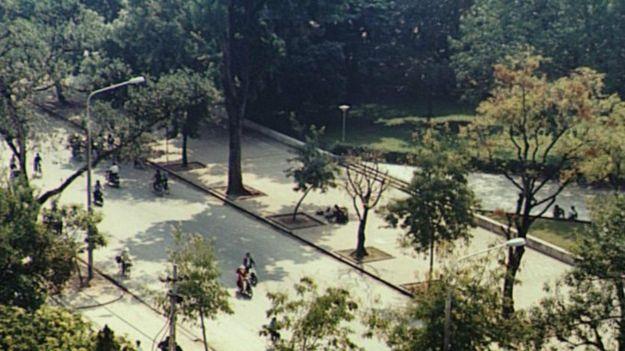 Cảnh cây xanh Hà Nội, 1994