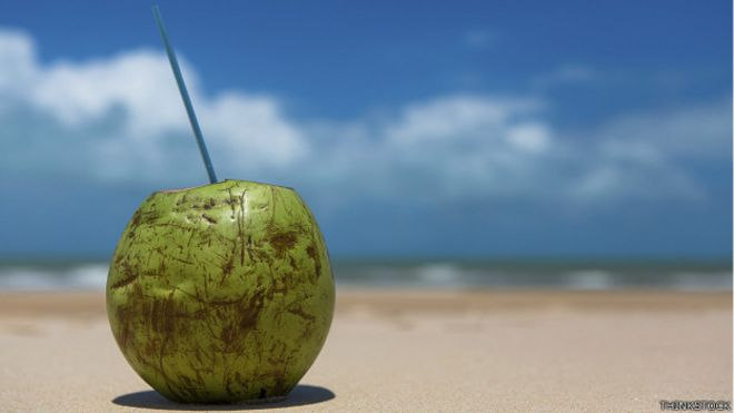 Coco en playa
