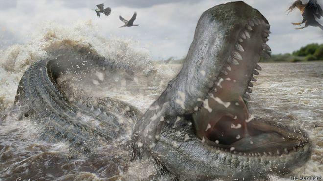 Purussaurus brasiliensis | Foto: Tito Aureliano