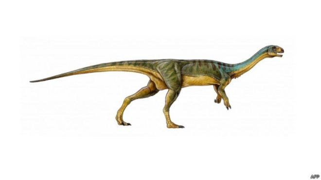 Un ni�o de 7 a�os descubre en Chile un dinosaurio �nico