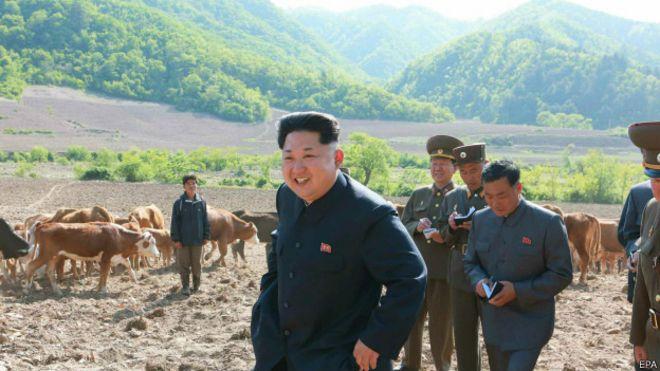 Kim Jong-un, presidente da Coreia do Norte, inspecionando um rancho no interior do país (EPA)