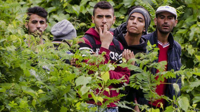 HUNGRIA....TIENE PREVISTO APROBAR EN SU PARLAMENTO..EL DIA MIERCOLES. UN CERCO DE VARIOS KMS. POR 4 METROS DE ALTO. PARA QUE NO SIGA HABIENDO MAS INGRESOS DESDE SERBIA ILEGALMENTE 150623141051_migrants_border_624x351_afp