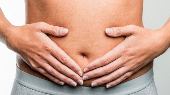 Qué debes comer para tener un intestino sano