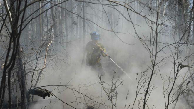 Пожарный в лесу