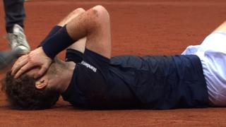 Andy Murray celebrates as Great Britain win the Davis Cup