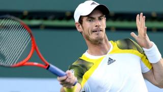 Andy Murray in action against Berlocq
