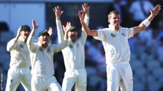 Peter Siddle appeals successfully for the wicket of Tim Bresnan