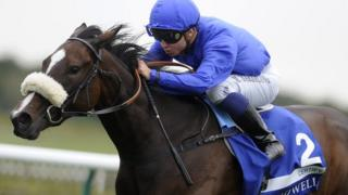 Certify at Newmarket