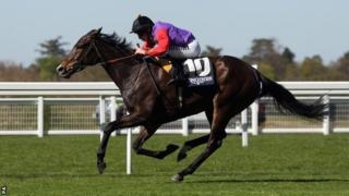 Estimate, which won the Gold Cup at Royal Ascot in 2013 and came second in 2014
