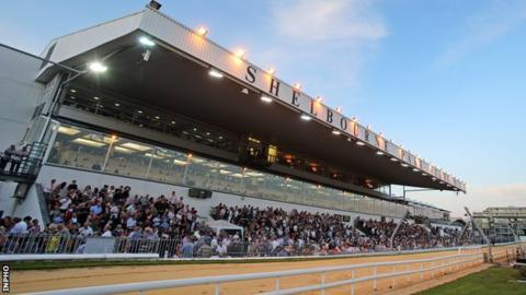 The Irish Greyhound Derby takes place at Shelbourne Park on 23 September