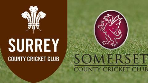 Surrey v Somerset