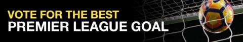 Vote for your favourite Premier League goal