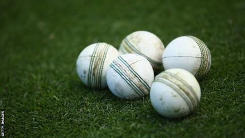 A stock image of white cricket balls