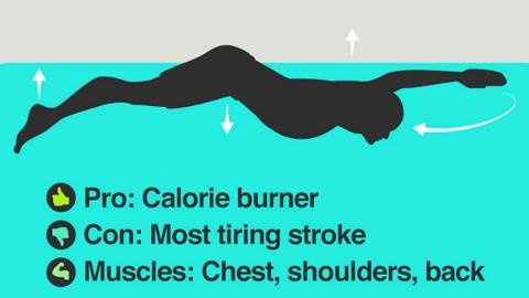 Graphic showing the pros and cons of the butterfly swimming stroke