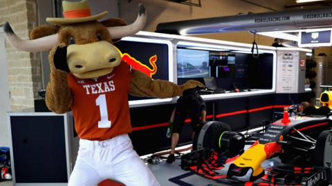 Texas Longhorns mascot