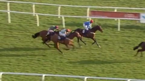 Jockey loses race after finish line blunder