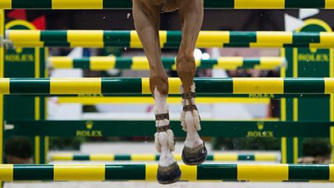 British Equestrian