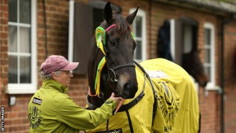 Former Grand National Winner Many Clouds Dies After Winning at Cheltenham