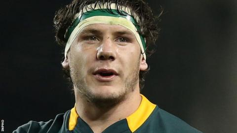Marcell Coetzee has 28 caps for South Africa