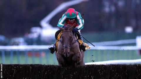 Vieu Lion Rouge ridden by Tom Scudamore