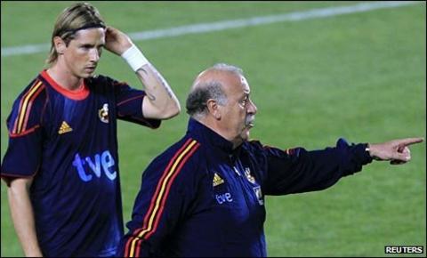 Fernando Torres and Vicente del Bosque
