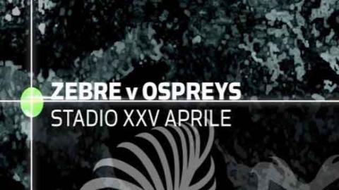 Zebre 16-34 Ospreys