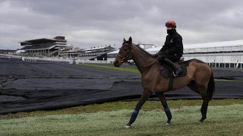 Paul Townend riding Quevega on a frozen Cheltenham racecourse