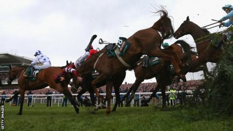 Grand National fence