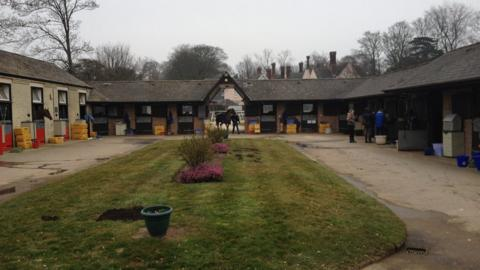 The Somerville Lodge yard of Classic-winning trainer William Haggas, who was victorious in the 1986 Epsom Derby with Shaamit and won the Oaks with fully Dancing Rain 25 years later