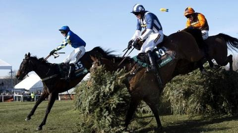 Auroras Encore (left) won the 2013 Grand National