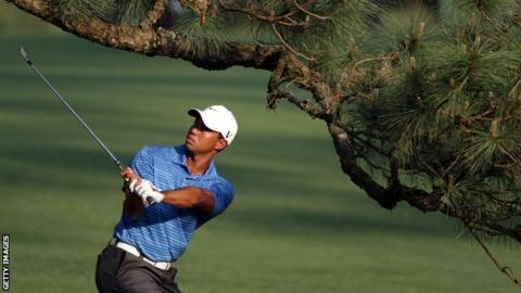 Tiger Woods and the Eisenhower Tree