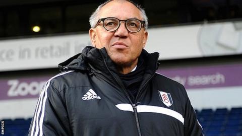 Fulham manager Felix Magath